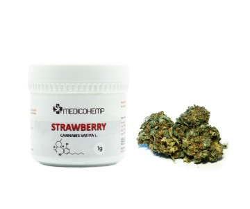 MedicoHemp STRAWBERRY Susz...